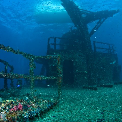 "Sunreef Mooloolaba to host second ""Free HMAS Brisbane Dive Extravaganza"""