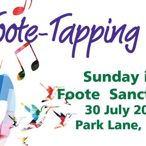 """Foote-tapping"" music coming to Buderim rainforest sanctuary"