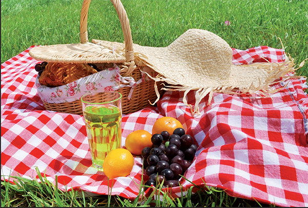 gns-picnic