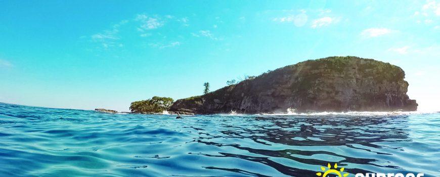 Mudjimba-Island-withSunreefLogo